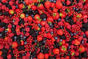 Hillwood Berry Farm - Berries