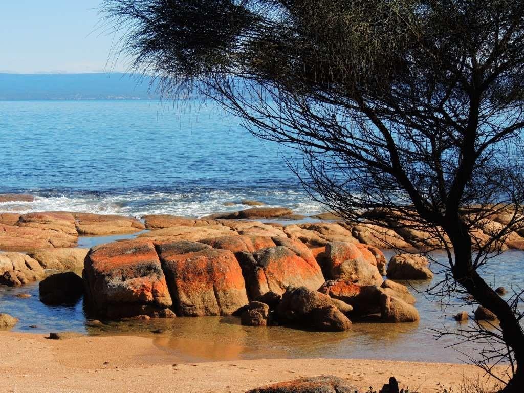 232 Coles Bay