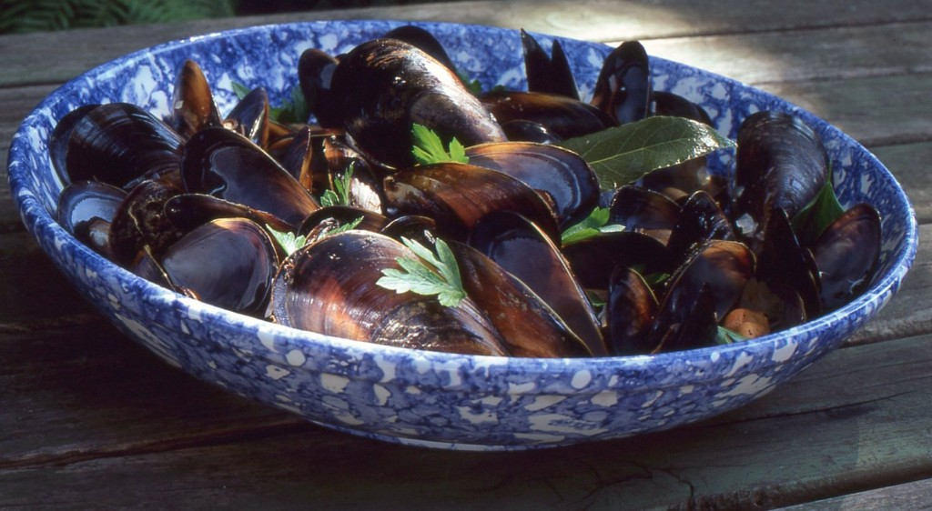Mussels - img358