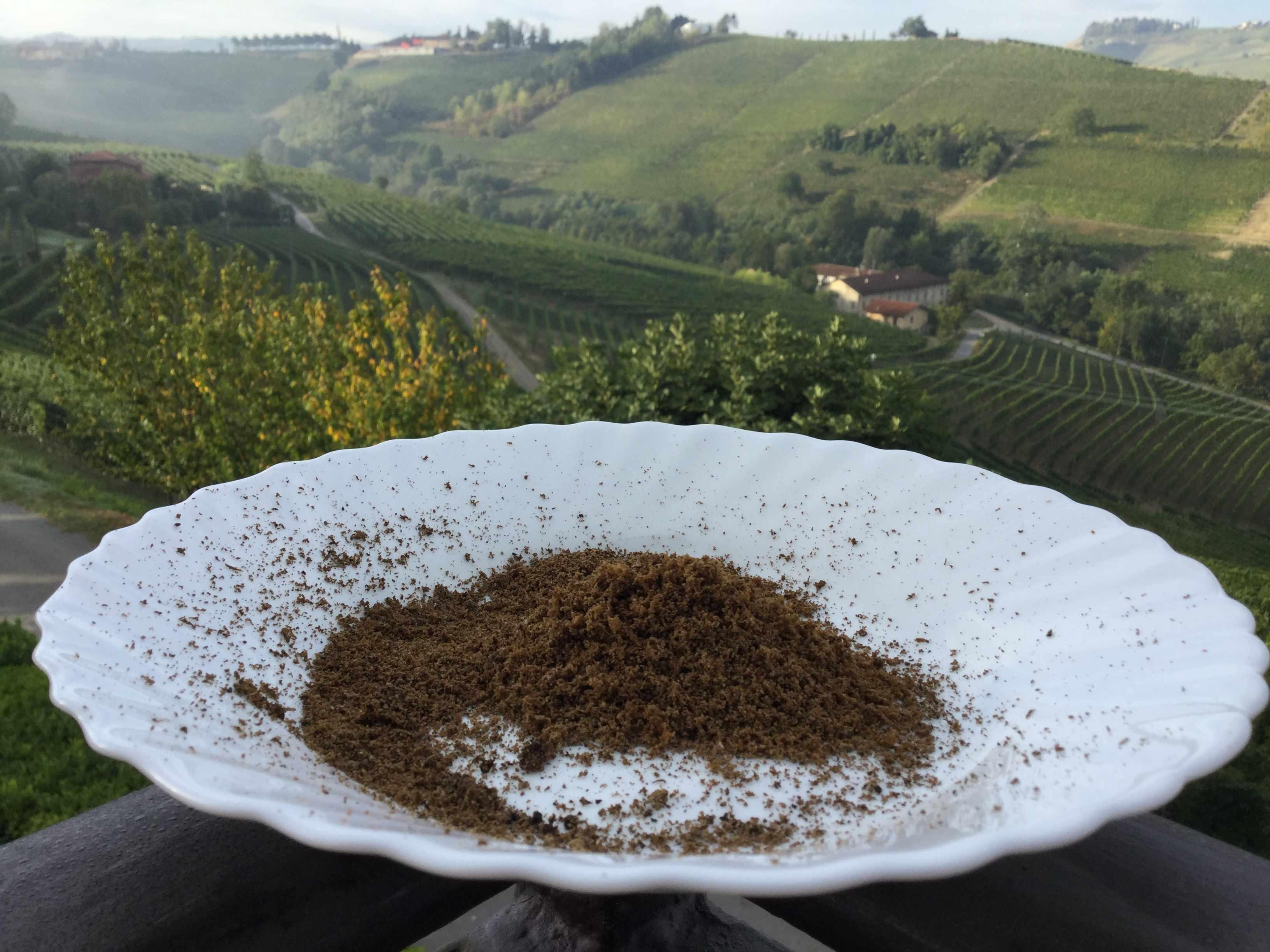 truffles-grated-img_6149